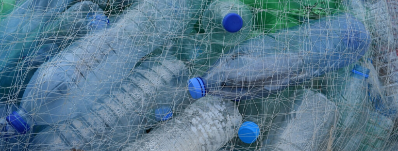 single-use plastic water bottles