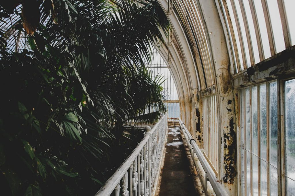 royal botanic gardens - tropical locations in londom