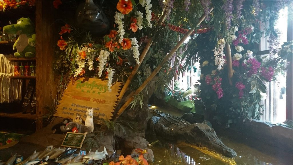 wishing pond in the rainforest cafe, london