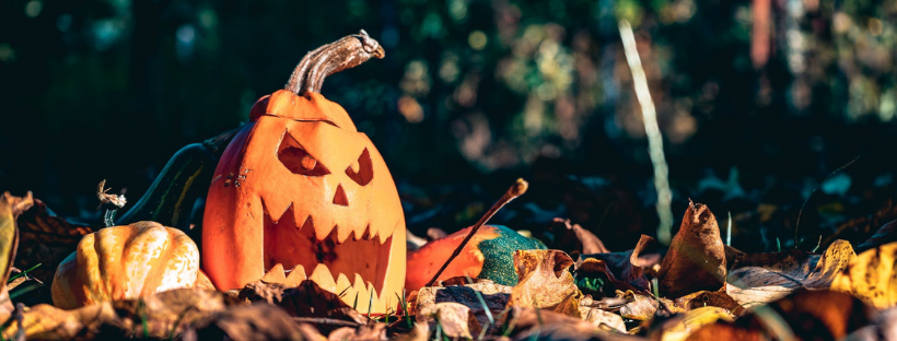 Pumpkin carving - how to upcycle your jack-o-lantern
