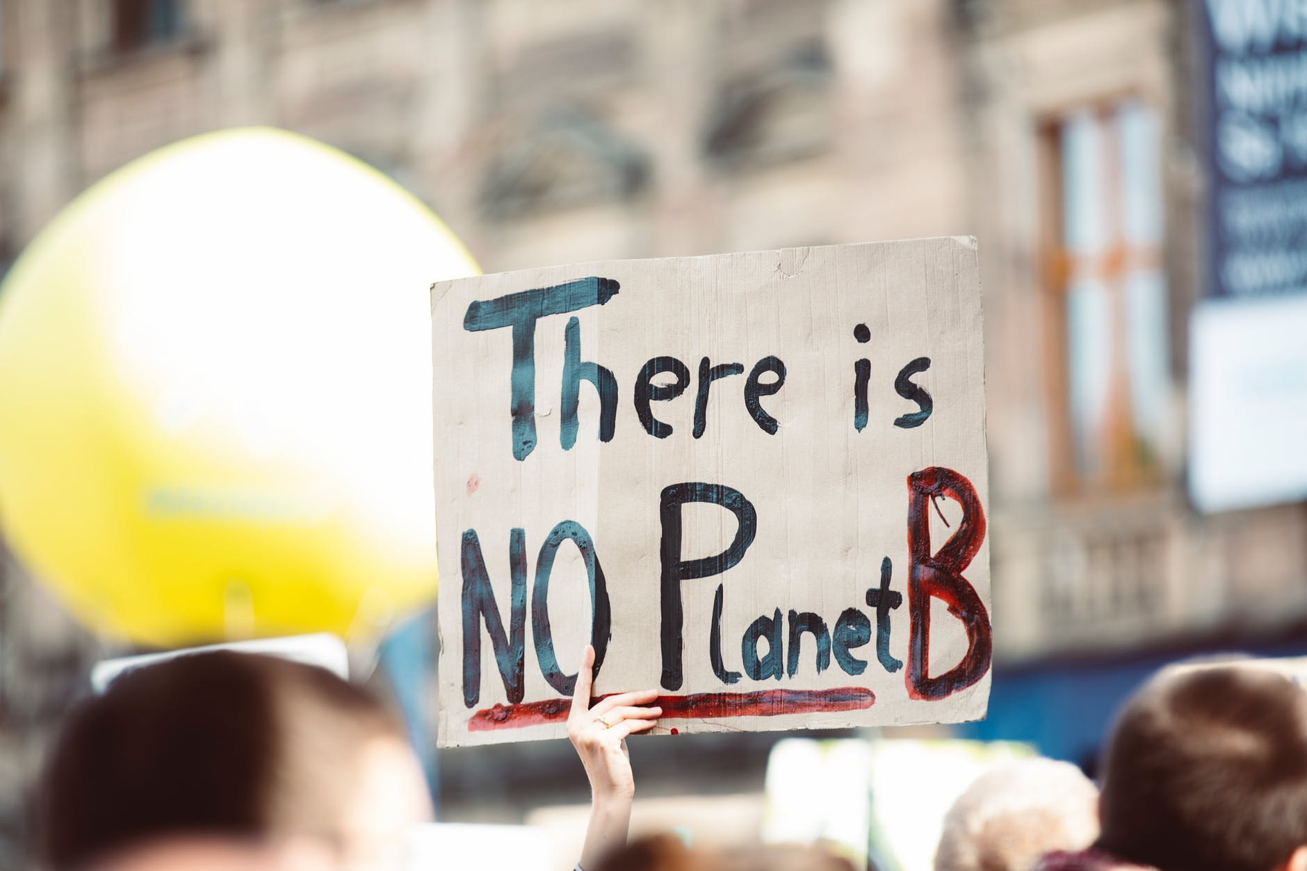 """""""there is not plant b"""" poster from protest as part of climate change charities to donate to list"""